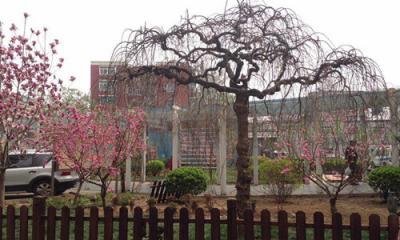 北京市第一中西医结合医院体检中心4