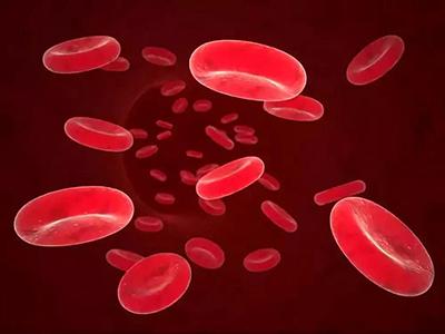 血粘度检查对老人体检很重要1